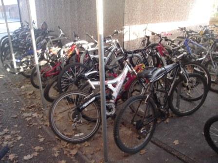 Bike_week_2