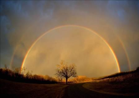 Rainbow_pic